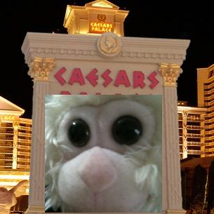 caesarsapp3
